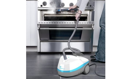 best steam cleaner for pet stains in 2015 steam cleanery