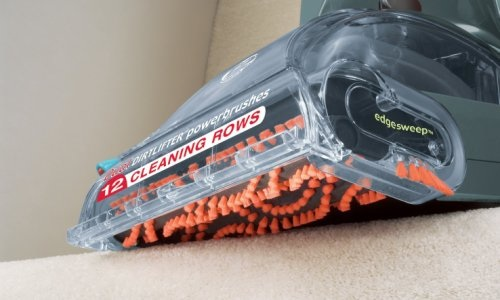 Best Carpet Cleaner For The Money Steam Cleanery