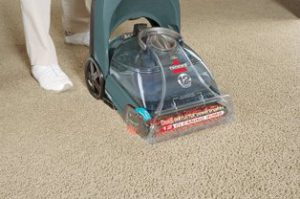 Best Carpet Cleaner for the Money3