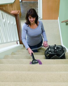 Bissell Spot Cleaner Professional Portable Carpet Cleaner 3624-2