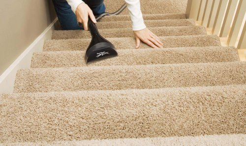 Got Animals Here Is The Best Steam Cleaner For Pets
