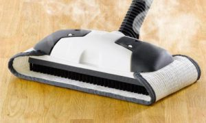 Eureka Enviro Hard-Surface Floor Steamer, 313A