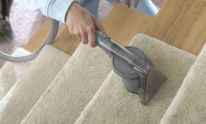 Best Steam Cleaners for Floors And Carpets