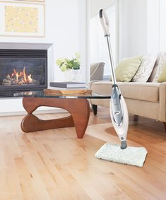 What are the Best Steam Mops for Hardwood Floors