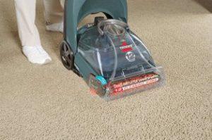 Best Carpet Cleaner for the Money3