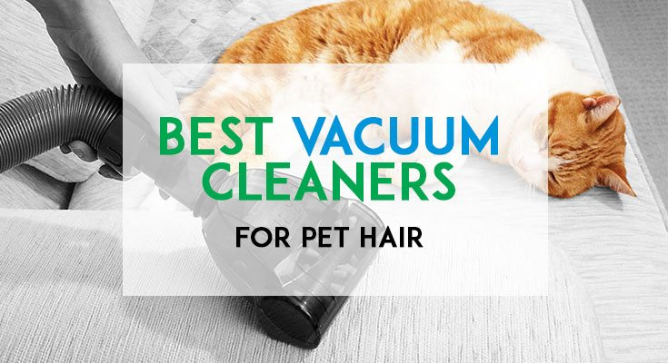 Best Pet Hair Vacuums Featured Image